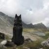 GPS-треки путешествий по Кавказу - последнее сообщение от Александр Ставрополь